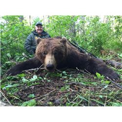 TRIPLE C OUTFITTERS: 10-Day Baited Brown and Black Bear Hunt for One Hunter in Alaska - Includes Tro