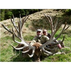 WANGANUI SAFARIS: 5-Day Red Stag Hunt for Three Hunters and Three Non-Hunters in New Zealand - Inclu