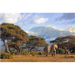 "DAWIE FOURIE: ""God's Own Country"" - Original Oil On Canvas by African Wildlife Artist Dawie Fourie"