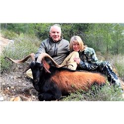 EUROHUNTS: 4-Day Balearian Goat Hunt and VIP Sightseeing for One Hunter and One Non-Hunter in Spain