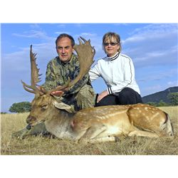 CAZATUR SPAIN: 4-Day European Fallow Deer Hunt for Two Hunters in Spain - Includes Trophy Fees