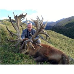 FOUR SEASONS: 4-Day Red Stag and Chamois Safari for Two Hunters in New Zealand - Includes Trophy Fee