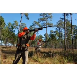 FAMILY EXPEDITIONS: 1-Day/2-Night Unlimited Quail Hunt for Eight Hunters in Georgia