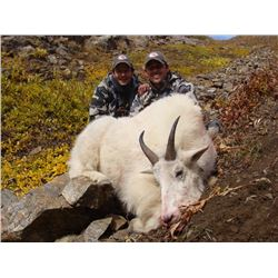 BIG TIME HUNTS: 8-Day Mountain Goat Hunt for One Hunter in Northern British Columbia
