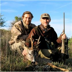 GREAT SPANISH HUNTS: 4-Day European Fallow Deer OR Roe Deer Hunt for Two Hunters in Spain - Includes