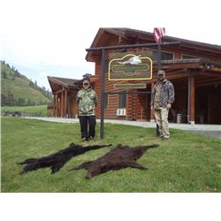 FLYING B RANCH: 5-Day Black Bear Hunt for Two Hunters in Idaho - Includes Trophy Fees