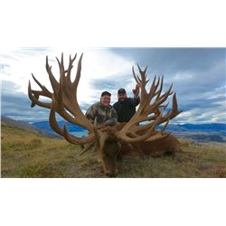 CARDRONA SAFARIS4-Day Red Stag Hunt for One Hunter and One Non-Hunter in New Zealand - Includes Trop