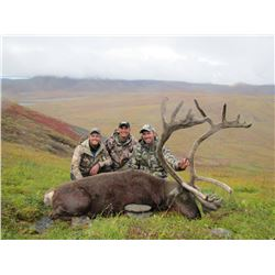 DELTANA OUTFITTERS: 7-Day Caribou Hunt for One Hunter in Alaska - Includes Trophy Fee