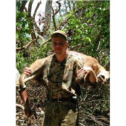 BALAM MEXICO: 7-Day Campeche Jungle Hunt for Two Hunters in Mexico - Includes Trophy Fees