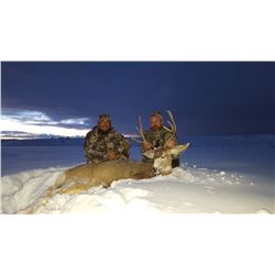 5-DAY MULE DEER HUNT IN NEW MEXICO FOR 1 HUNTER