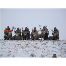 2-DAY GUIDES CHOICE MANAGEMENT HUNT FOR MULE DEER FOR 1 HUNTER & 1 NON-HUNTER