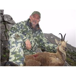 4-DAY CANTABRIAN CHAMOIS HUNT FOR 1 HUNTER