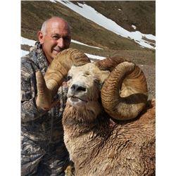 TAOS PUEBLO ROCKY MOUNTAIN BIGHORN SHEEP PERMIT
