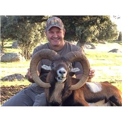 4-DAY MOUFLON HUNT FOR 2 HUNTERS (TROPHY FEES INCLUDED FOR 2 MOUFLON)
