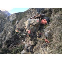 5-DAY NEW ZEALAND HUNT FOR 2 HUNTERS INCLUDING THE TROPHY FEES AND TROPHY CREDIT AND AN AIRLINE TICK
