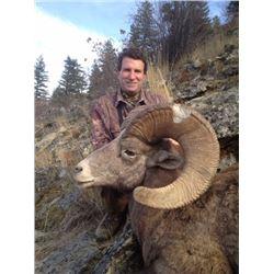 STATE OF WASHINGTON CALIFORNIA BIGHORN SHEEP PERMIT