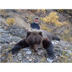 7-DAY SPRING GRIZZLY BEAR HUNT FOR 1 HUNTER