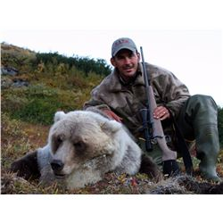 10-DAY DALL'S SHEEP/ARCTIC GRIZZLY/BARREN GROUND/CARIBOU/WOLF HUNT FOR 1 HUNTER IN ALASKA'S ARCTIC N