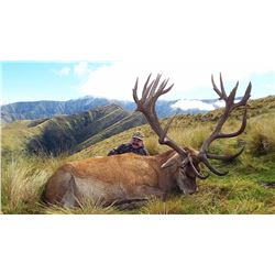 5-DAY RED STAG (UP TO 410 CLASS FAIR CHASE) AND BULL TAHR FOR 2 HUNTERS