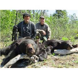 10-DAY BROWN/GRIZZLY BEAR & BLACK BEAR HUNT FOR 1 HUNTER
