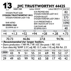 Lot 13 - JVC TRUSTWORTHY 44425