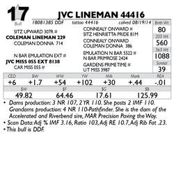 Lot 17 - JVC LINEMAN 44416