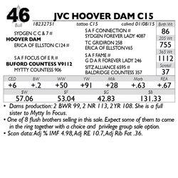 Lot 46 - JVC HOOVER DAM C15