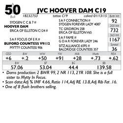 Lot 50 - JVC HOOVER DAM C19