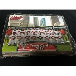 2012 Winnipeg Goldeyes Team Card Set
