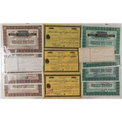 Fourteen Parrot Silver Mining Stock Certificates