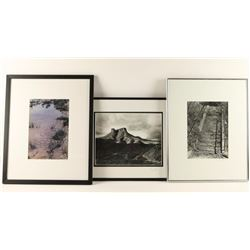 Collection of 3 Photographs