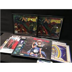 PAIR OF SPIDER-MAN LITHOGRAPH POSTERS ON FOIL AND A COLLECTION OF 33 1/3 RECORD ALBUMS