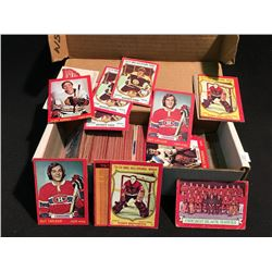 LOT OF OPC 1973 HOCKEY CARDS. LOTS OF STAR CARDS, UNMARKED CHECK LIST