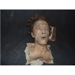 SEVERED ROTTEN BLOODY ZOMBIE HEAD A GRADE 24