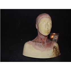 DEAD ROTTEN ZOMBIE WITCH FEMALE MAKE UP COWL ON FULL BUST 2