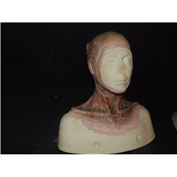 DEAD ROTTEN ZOMBIE WITCH FEMALE MAKE UP COWL ON FULL BUST 5