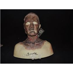 DEAD ROTTEN ZOMBIE WITCH FULL BUST MAKE UP SET