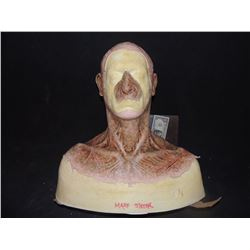DEAD ROTTEN ZOMBIE WITCH MALE MAKE UP COWL ON FULL BUST 11