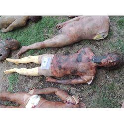 AUTOPSY DEAD BLOODY ROTTEN ZOMBIE BODY 14