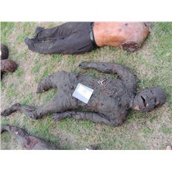AUTOPSY DEAD BLOODY ROTTEN ZOMBIE BODY 24