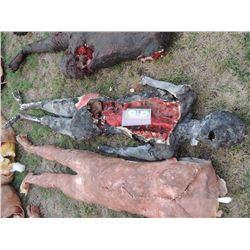 AUTOPSY DEAD BLOODY ROTTEN ZOMBIE BODY 26