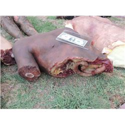 AUTOPSY DEAD BLOODY ROTTEN ZOMBIE BODY 02