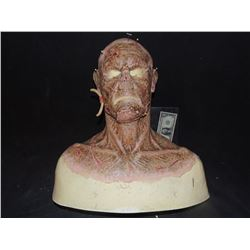 DEAD ROTTEN ZOMBIE WITCH MALE COMPLETE MAKE UP WITH COWL ON FULL BUST 3