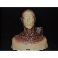 DEAD ROTTEN ZOMBIE WITCH MALE MAKE UP COWL ON FULL BUST 08