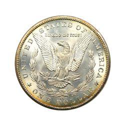 1885-CC $1 Morgan NVG8