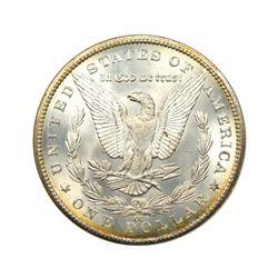 1889-CC $1 Morgan NVG8
