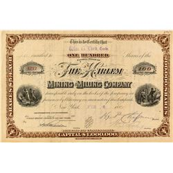 The Harlem Mining & Milling Company Stock Certificate