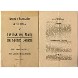Report of the Mines of the McKinley Mining and Smelting Co.