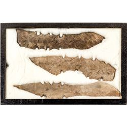 Large Native American spearheads: Lot 1