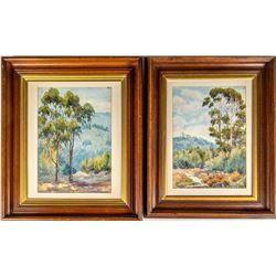 Two Eucalyptus Watercolor Paintings by Pierce